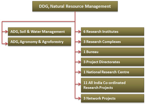 Organizational Structure of NRM