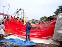 Loading of large mesh purse seine net on fishing boat