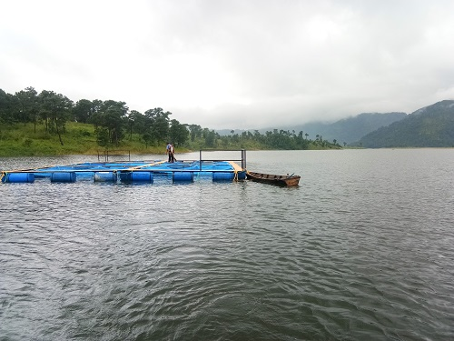 Cage Culture in Umiam Reservoir, Meghalaya under TSP