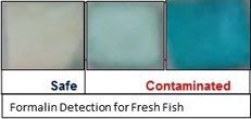 ICAR-CIFT develops Rapid Detection Kits to check the adulterations in fresh fish: A path breaking initiative